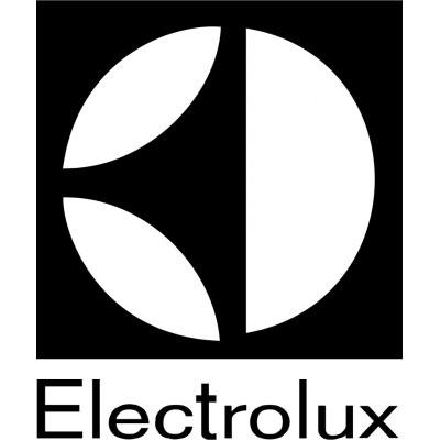 Ремонт котлов Электролюкс (Electrolux)