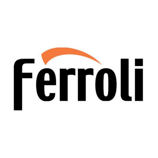 Ремонт котлов Ферроли (Ferroli)